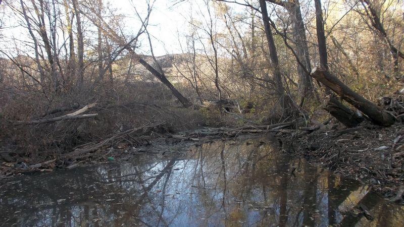 Река Блява в Медногорске